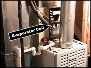furnace with evaporator coil showing