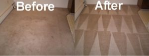 before and after hot water extraction method of carpet cleaning