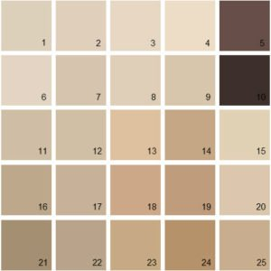 color chart of beiges with several undertone colors