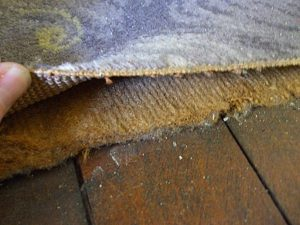 dust within and under carpet pad