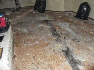dust found under carpet was removed