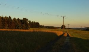 local overhead power transmission lines