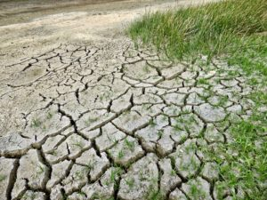 photo of cracked dry soil